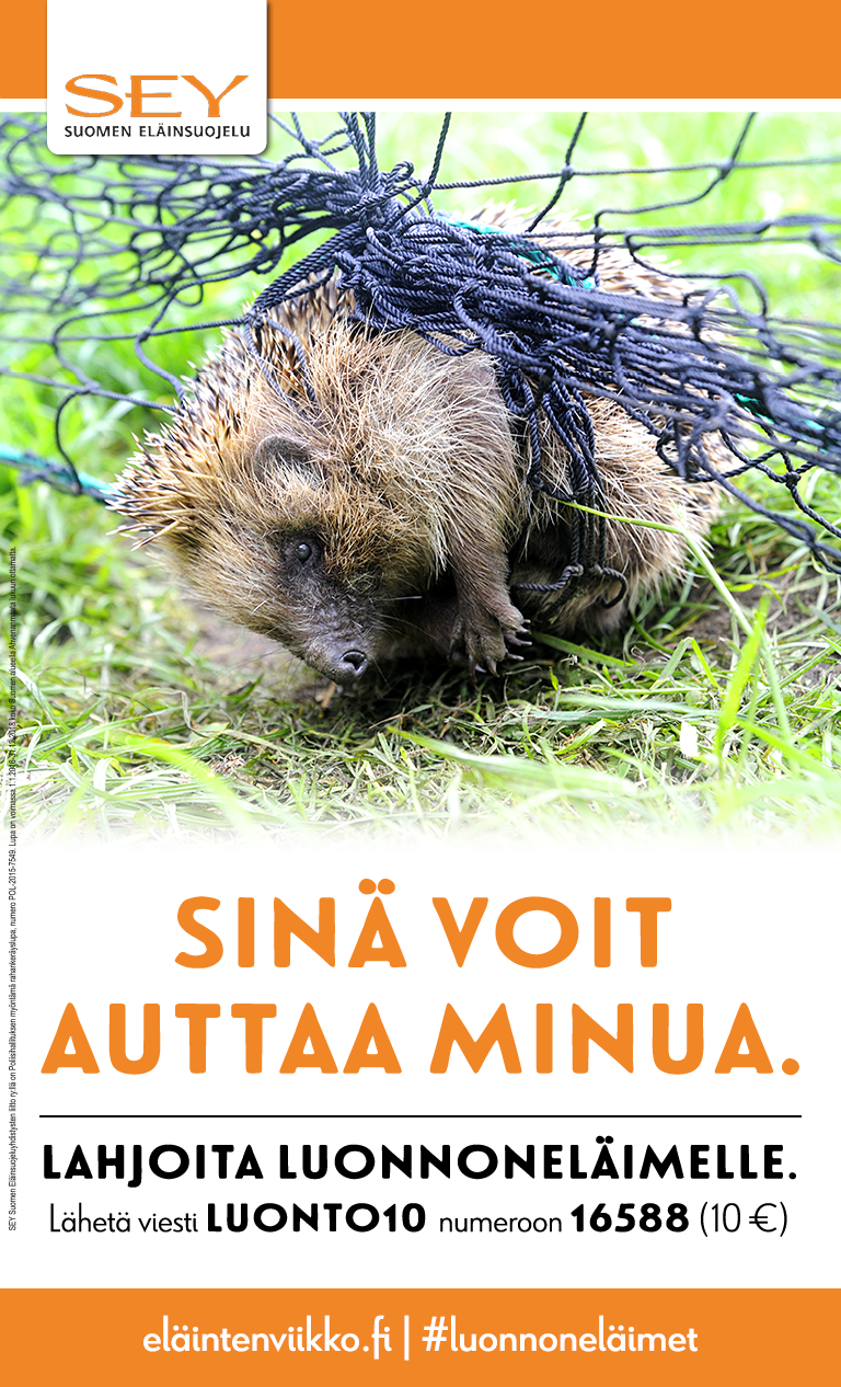 Juliste jossa siili on ruohikolla jumissa peliverkossa. Lisäksi teksti: Sinä voit auttaa minua. Lahjoita luonnoneläimelle. Lähetä viesti LUONTO10 numeroon 16588 (10 €). luonnoneläimet.fi/#luonnoneläimet