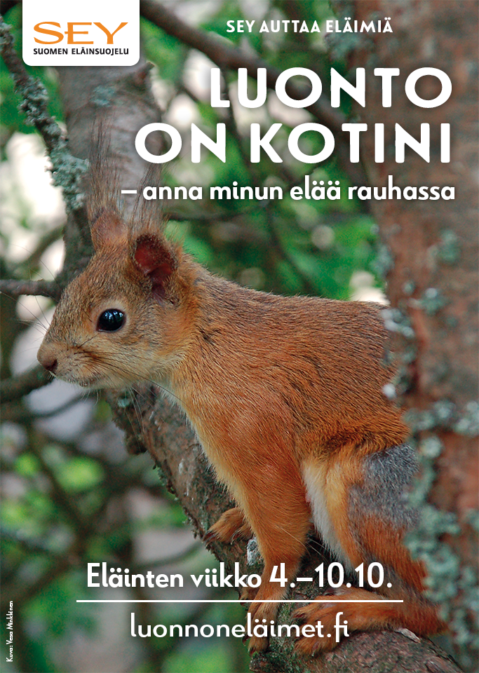 Kuvassa Eläinten viikon koululaisille suunnattu juliste, jossa on sivukuva oravasta puussa, SEYn logo sekä tekstit: Luonto on kotini - anna minun elää rauhassa, Eläinten viikko 4.-10.10. ja luonnoneläimet.fi