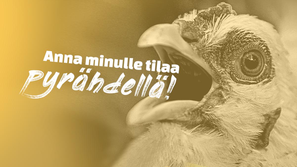Keltainen kuva kanasta, joka huutaa: Anna minulle tilaa pyrähdellä! Yksikään eläin ei ole häkkieläin! Allekirjoita vetoomus.