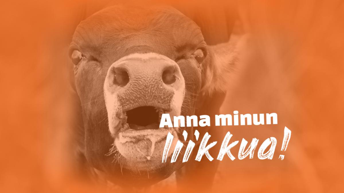 Oranssinsävyinen kuva vasikasta, joka huutaa: Anna minun liikkua! Yksikään eläin ei ole häkkieläin! Allekirjoita vetoomus.