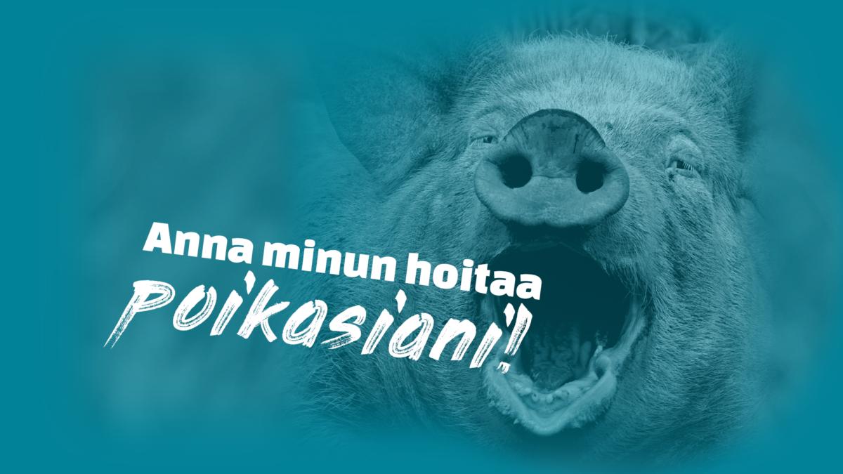 Turkoosinvärinen kuva siasta, joka huutaa: Anna minun hoitaa poikasiani! Yksikään eläin ei ole häkkieläin! Allekirjoita vetoomus.